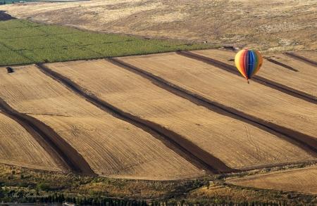 לעוף על העמק