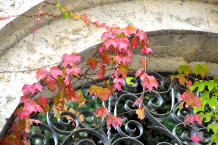 שער לסתיו