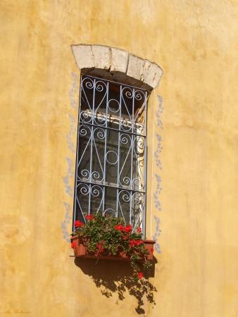 חלון מעוטר