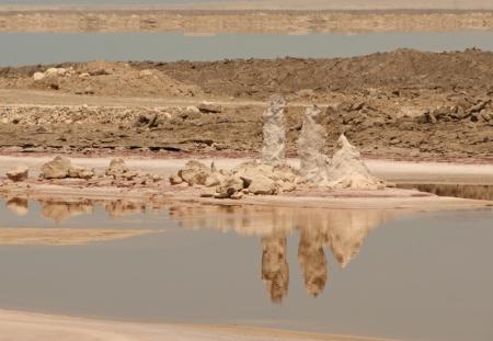 נציבי מלח Dead Sea