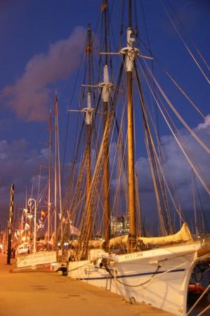מפרשית בנמל בלילה