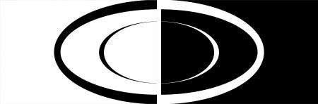 אליפסה שחור לבן