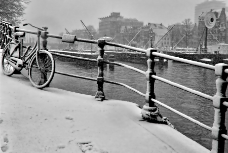 אופני שלג