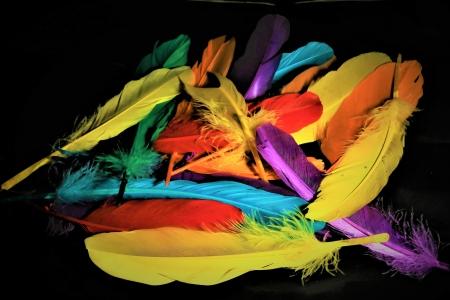 משחקי צבע
