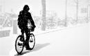 אופניים בשלג
