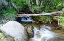 מים בתנועה
