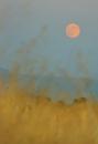 ירח מלא ספטמבר