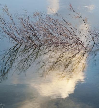 ענן במים