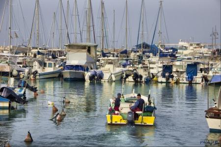 יוצאים לדייג