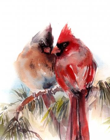 זוג ציפורים