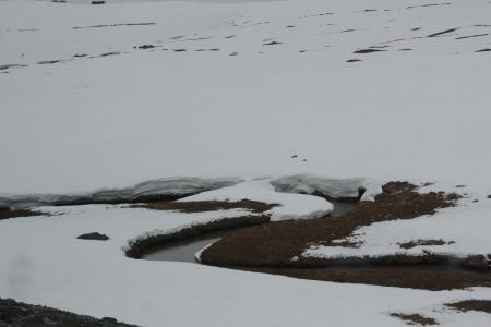 נהר בשלג