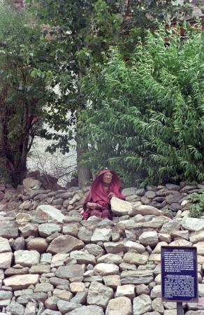 הנזיר המציץ