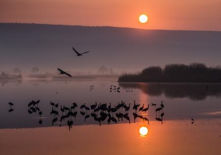 בוקר של יום חדש