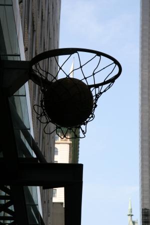 כדור רשת