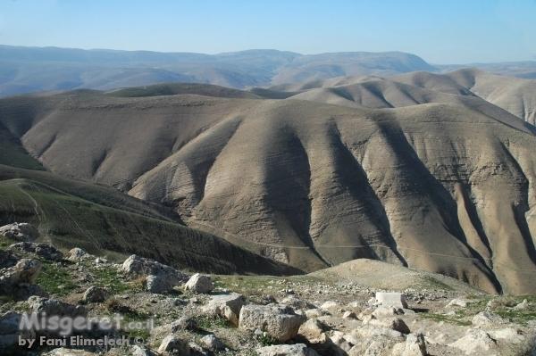 שיפולי הרי פרא