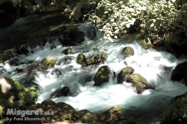 ליחשושי מים 2