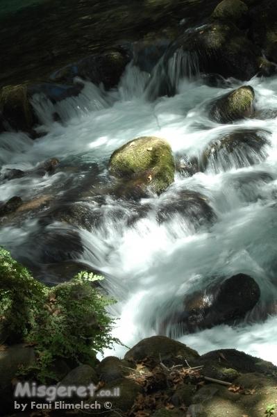 ליחשושי מים 3