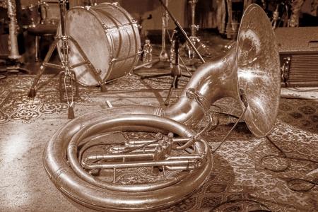 נחש מוזיקלי