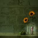 שני פרחים ותפוח