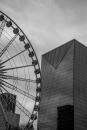 גלגל ענק