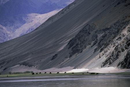 הנהר וההר