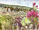 פרח בוגונויליה עם נוף