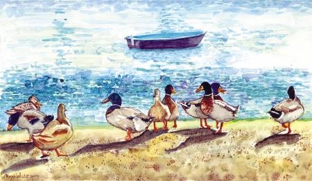 9 ברווזים