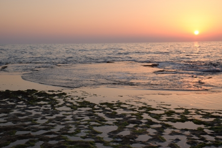 השמש בים