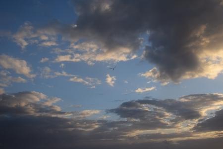 לעוף בשמיים