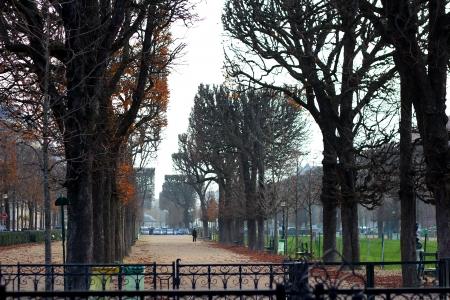 השדרה בפריז
