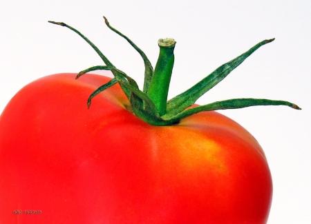עגבניה גדולה