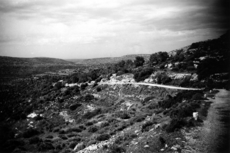נבי סאלח 1946