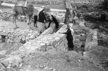 שוקת במעיין 1947 - עלאר