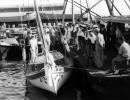 תל אביב 1939 מסדר צופי ים