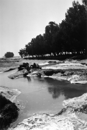 נבי רובין 1940 שטפון