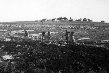 כפר עציון 1946 הכשרת קרקע