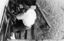 תל אביב 1937 סירה בתיקון