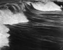 תל אביב 1937 - סערה בנמל