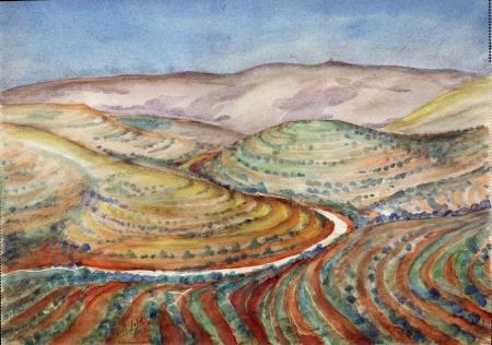 נוף בהרי יהודה