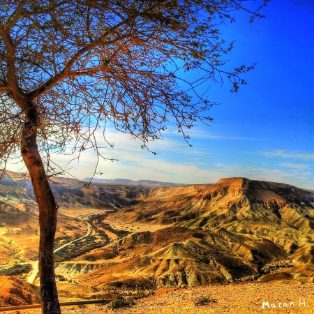 ארץ המדבר