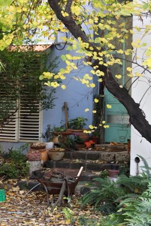 כניסה מהחצר