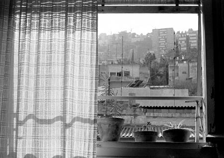 חלון לעיר