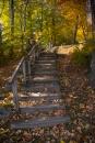 מדרגות לסתיו