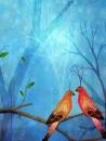 ציפורי אהבה-לאהבה וזוגיות