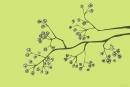 ענף יפני ירוק
