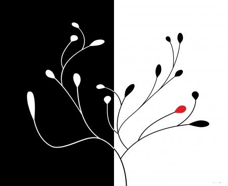 שלכת שני חלקים שחור לבן