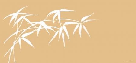 ענף במבוק בהיר