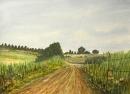 דרך השדות