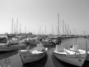 סירות שחור-לבן