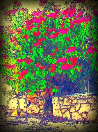 עץ עם עלים אדומים